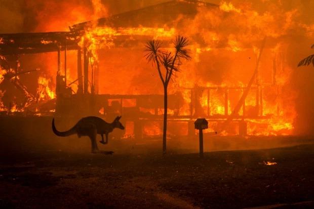 Nước Úc chìm trong biển lửa.