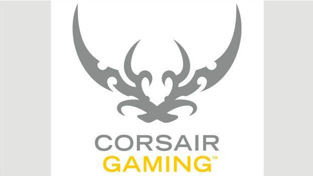 Những game thủ lớn tiếng đã viết thư phản kháng yêu cầu công ty phải đổi logo và Corsair đã phải đáp ứng bằng cách âm thầm bỏ nó hồi tháng 6/2015.