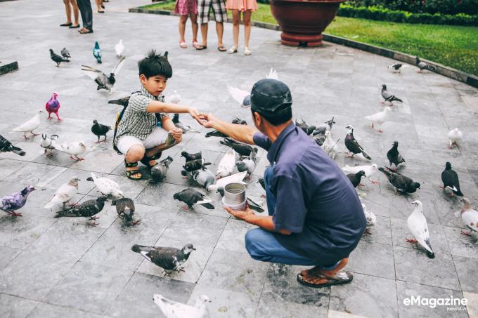 Người đàn ông nuôi bồ câu, gieo hạt mầm lương thiện vào lòng trẻ nhỏ.
