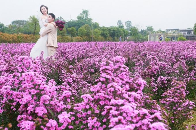 Nhiều vấn đề thời sự quá, chúng ta đã quên Hà Nội đang vào mùa hoa
