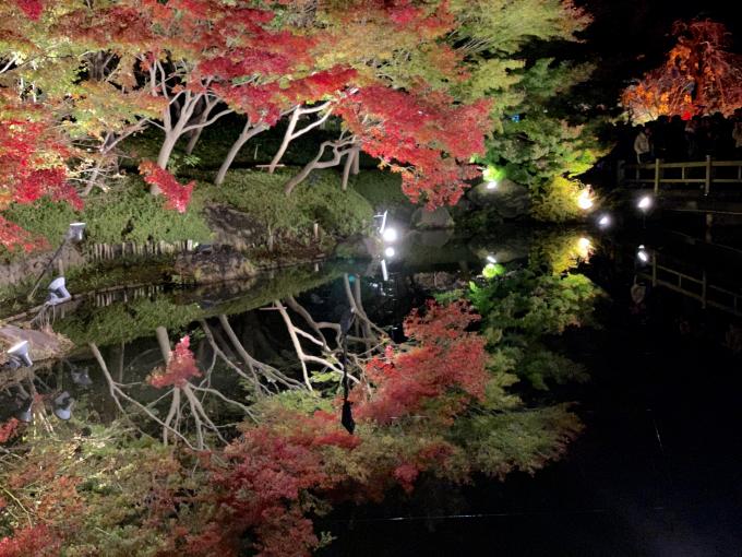 Hồ gương là một điểm thú vị của công viên vào buổi tối. Được ánh đèn cộng hưởng cùng làn nước trong vắt, bóng cây in rõ trên mặt nước tạo hiệu ứng thị giác đặc biệt