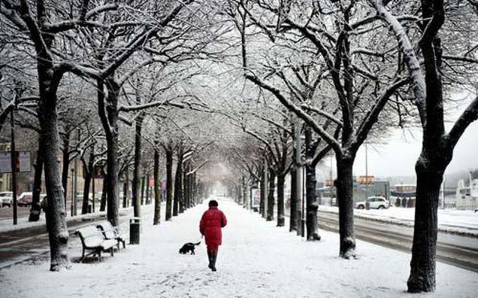 Chỉ còn những nỗi nhớ về mùa đông là trở qua trở lại