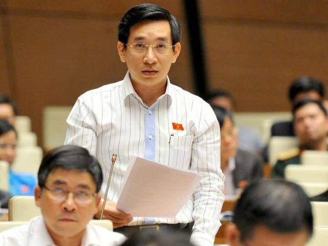 Đại biểu Nguyễn Văn Cảnh của tỉnh Bình Định (ảnh: Quốc hội)