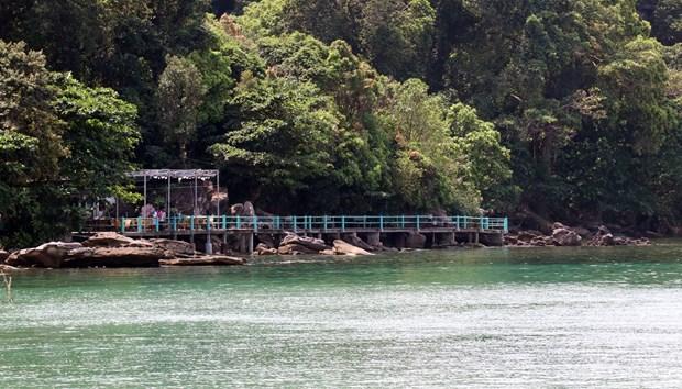 Lấn chiếm rừng mé biển khu vực Vườn Quốc gia Phú Quốc tại địa bàn ấp Gành Dầu, xã Gành Dầu (Phú Quốc) kinh doanh dịch vụ du lịch. (Ảnh: Lê Huy Hải/TTXVN)