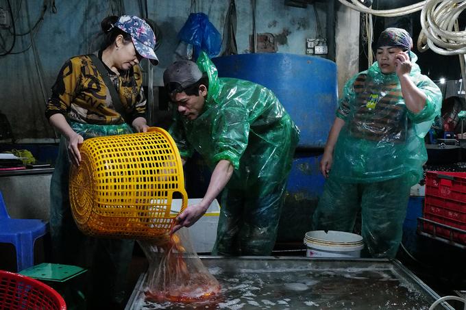 Chợ đầu mối bán hàng chục tấn cá phục vụ nhu cầu phóng sinh dịp tết ông Táo