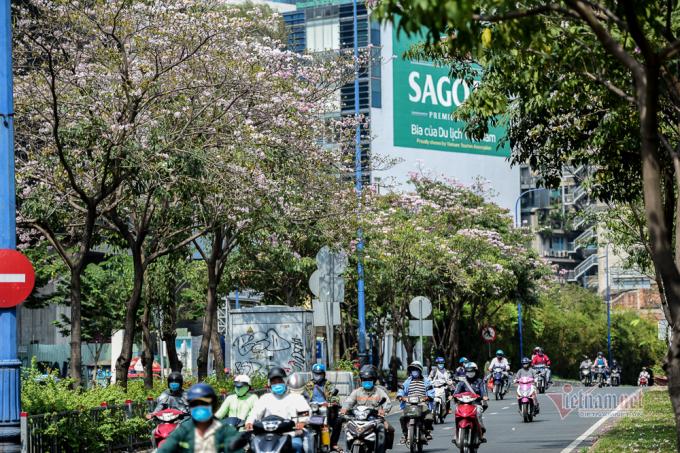 Con đường hoa trên đường Võ Văn Kiệt, Quận 1.