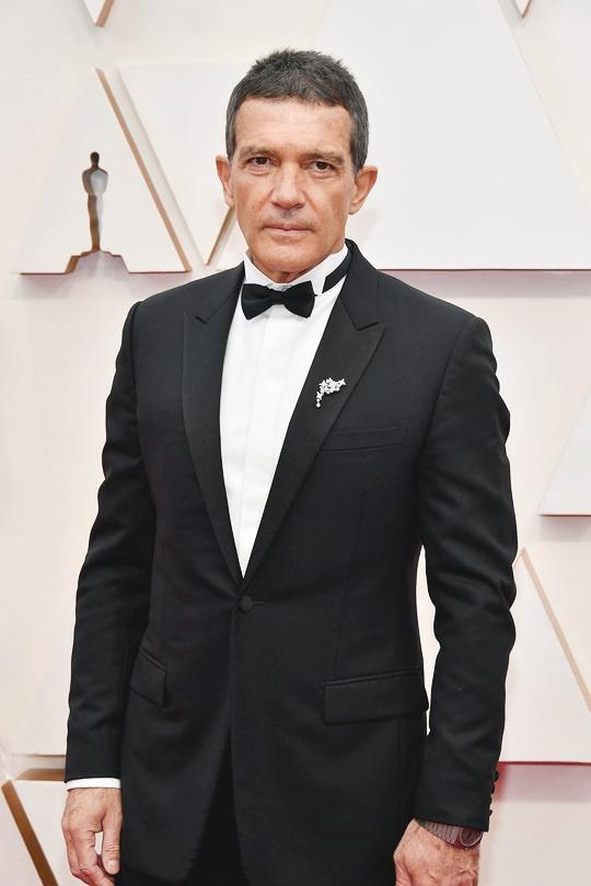 Antonio Banderas có đề cử Oscar đầu tiên sự nghiệp là Nam diễn viên chính xuất sắc với bộ phim