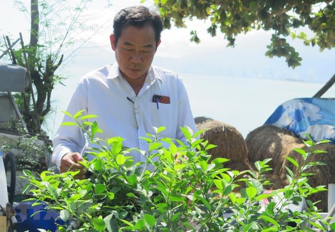 Ông Nguyễn Văn Dũng là Cựu chiến binh, thương binh hạng 2/4 trú tại phường Vĩnh Hòa, thành phố Nha Trang, tỉnh Khánh Hòa. Ông là một trong số ít những người lính trở về sau trận chiến đấu bảo vệ Gạc Ma thuộc quần đảo Trường Sa năm 1988.