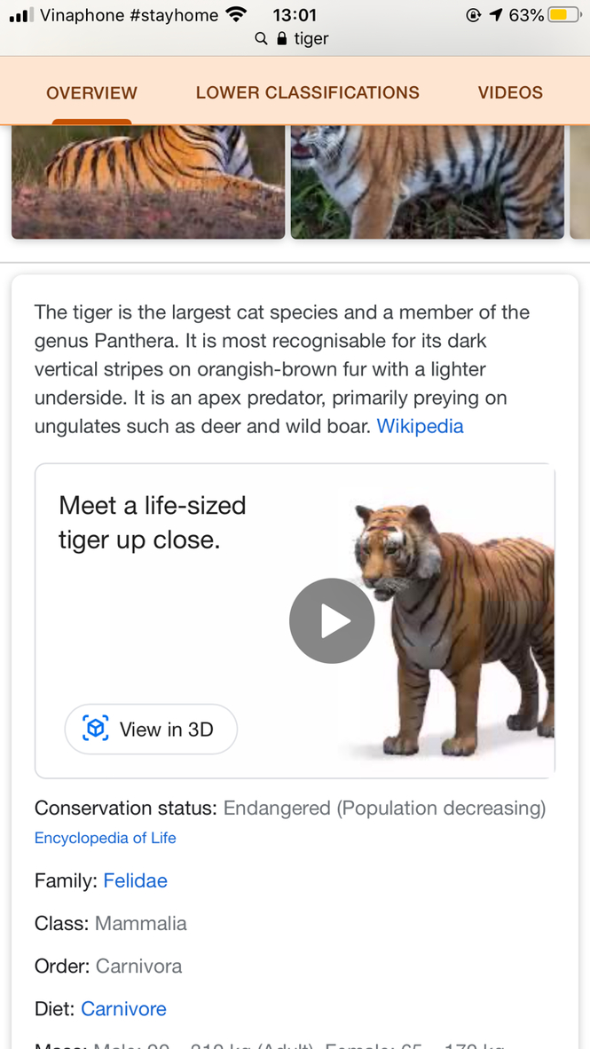 """Chạm vào ô """"View in 3D"""" (Xem ở chế độ 3D) để hình ảnh 3D của con vật xuất hiện trên màn hình điện thoại. Ảnh: Thái An."""