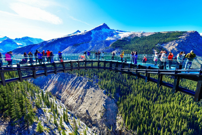 Cầu kính Glacier Skywalk, Alberta, Canadachiều dài gần 400 m và ở độ cao 280 m so với thung lũng Sunwapta. Toàn bộ sàn đều là kính để giúp du khách ngắm cảnh và tham quan cảnh vật.
