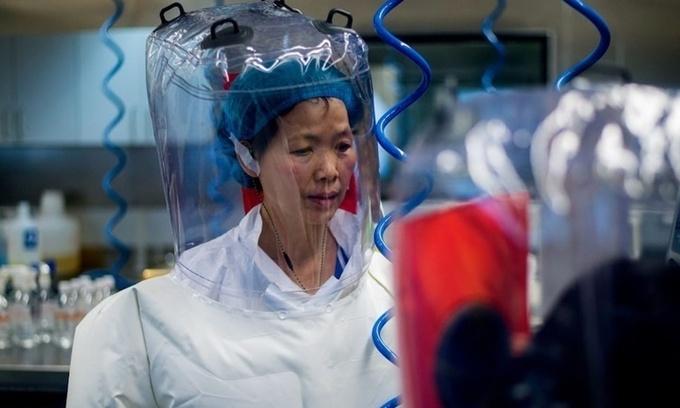 Nhà virus học Thạch Chính Lệ tại một phòng thí nghiệm ở Vũ Hán năm 2017. Ảnh: AFP.