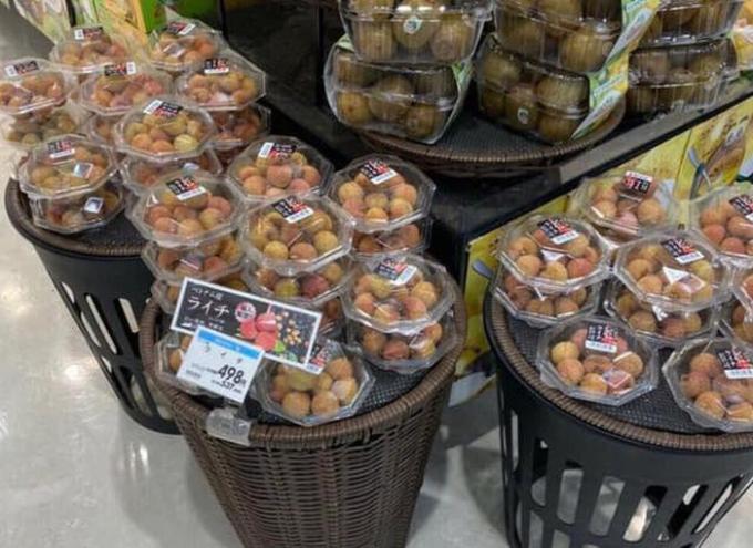 Hạt của quả vải thiều được bán ở Nhật với giá 140.000 đồng/ 5 hạt