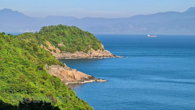 Bán đảo Sơn Trà là vương quốc của Nữ hoàng linh trưởng Voọc chà vá chân nâu.