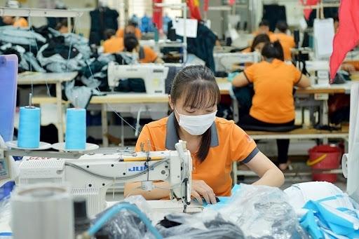EVFTA chính thức có hiệu lực, nhiều mặt hàng chủ lực của Việt Nam được hưởng lợi