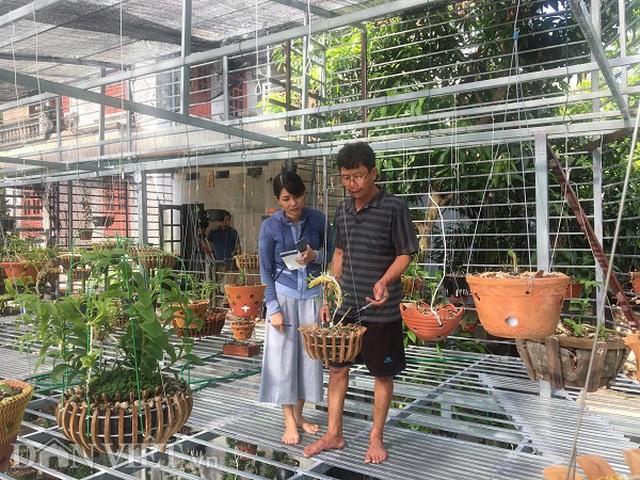 Ông Nam, Đoàn Văn Nam (huyện Phù Ninh, tỉnh Phú Thọ) đã chơi lan cả chục năm