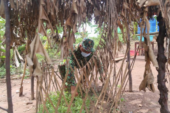 Các chiến sĩ trồng rau, nuôi gà gần khu vực đóng chốt.