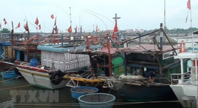 Tàu thuyền trên địa bàn tỉnh Quảng Bình đã vào tránh trú bão an toàn. (Ảnh: Võ Dung/TTXVN)