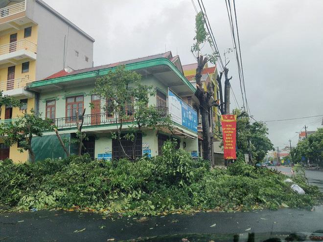 Cây cối đổ ngổn ngang trên đường Lê Lợi, TP. Đồng Hới