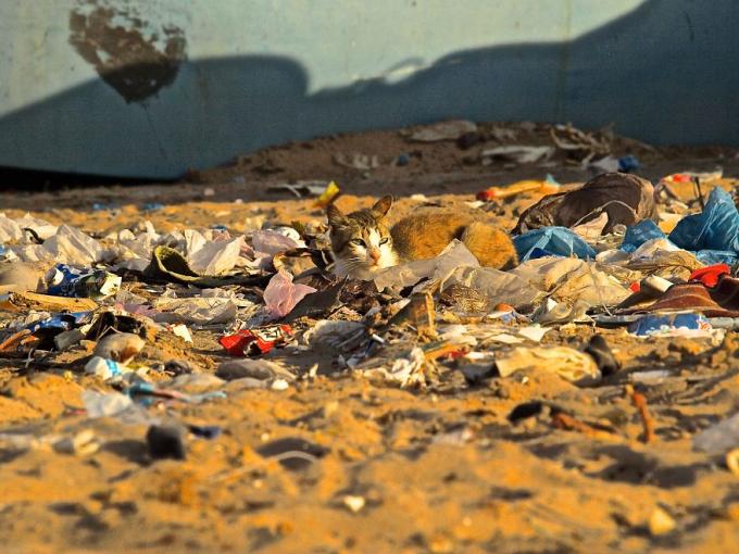 Một góc bờ biển đầy rác ở phía Tây Sahara, Morocco.
