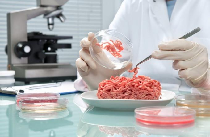Thịt tôm nhân tạo với mức giá không tưởng 5.000 USD/1kg