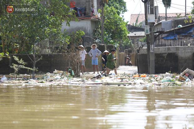 Những khu vực cạnh mép sông Kiến Giang, rác dạt vào từng đống cao, chắn ngang lối đi của người dân.