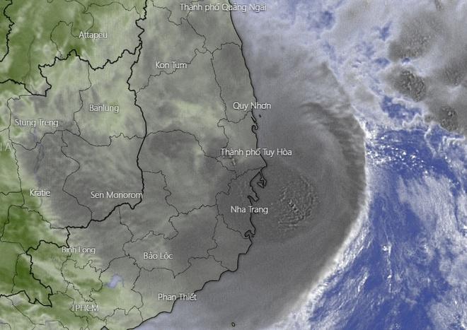 Hình ảnh vệ tinh của bão số 12.Ảnh:Windy.