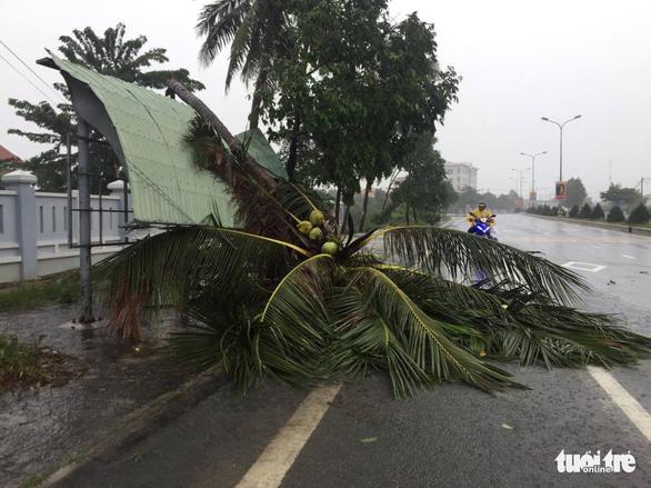 Mưa và gió lớn tại huyện Vạn Ninh, Khánh Hòa làm cây đổ, ngập cục bộ vài nơi - Ảnh: THẾ THẾ