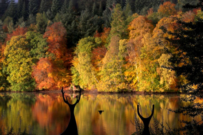 HồLoch Faskally ở thị trấn Pitlochry, Scotland. Ảnh:Reuters.