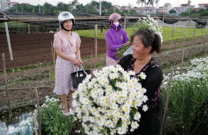Khách đến mua hoa tại vườn mỗi ngày đều khá đông.