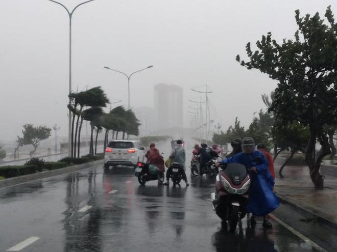 Khánh Hòa  cho học sinh nghỉ học ngày 1/12 vì mưa lớn