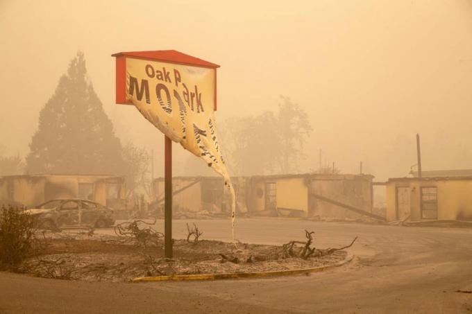 Cảnh hoang tàn đám cháy Beachie Creek ở Gates, bang Oregon (Mỹ) vào ngày 13/9. Ảnh: Getty Images