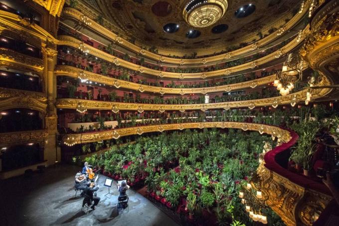Dàn nhạc công biểu diễn cho khán giả là 2.292 cây vào ngày 22/6 tại Barcelona. Ảnh: Getty Images
