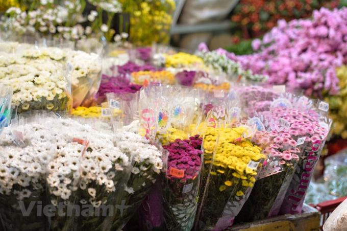 Chợ hoa Quảng An còn đa dạng với nhiều loại hoa khác như thạch thảo, salem, violet, cúc vàng, thực dược, lay ơn… (Ảnh: Minh Sơn/Vietnam+)