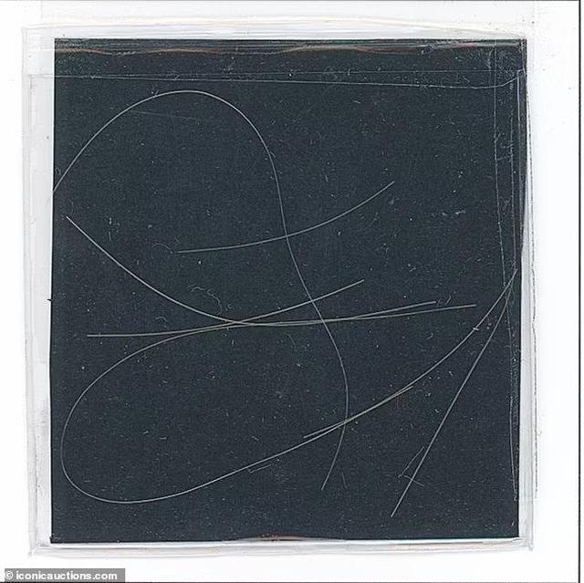 6 sợi tóc có giá... hơn 325 triệu đồng