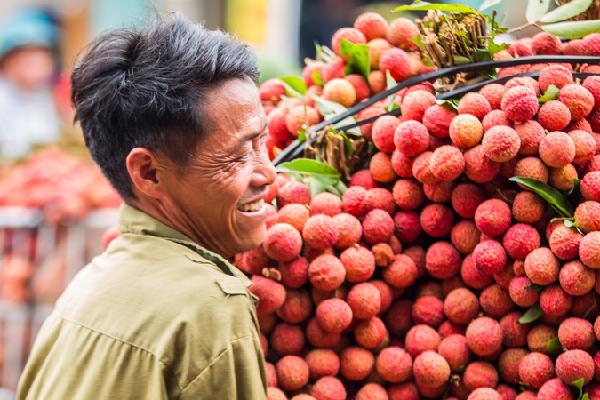 """""""Giải cứu"""" làm giá các mặt hàng nông sản của tỉnh Bắc Giang đều giảm"""