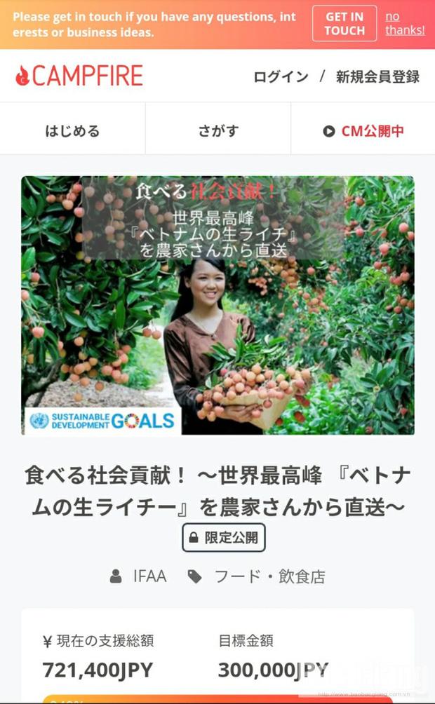 Vải thiều Bắc Giang được bày bán trên các gian hàng trực tuyến của Nhật (Nguồn: Báo Bắc Giang)