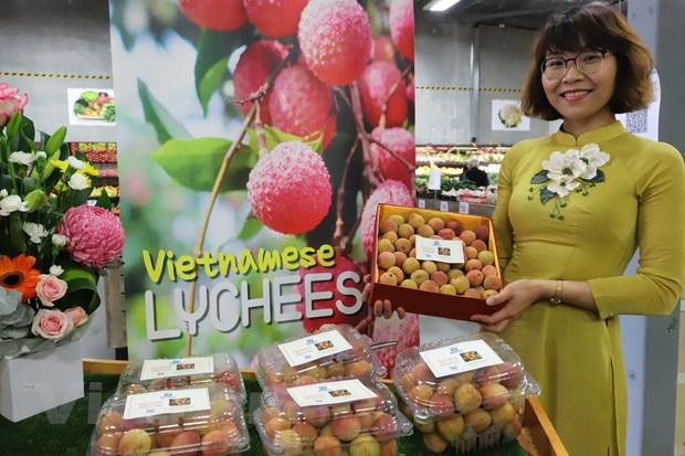 Hộp vải tươi Việt Nam được đấu giá thành công với giá trị lên tới gần 53 triệu VND. (Ảnh: Diệu Linh/TTXVN)