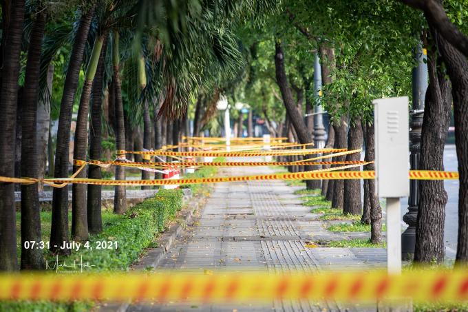Dải dây đan lưới giữa hai hàng cây bên phố Sài Gòn