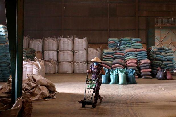 Malaysia và Việt Nam gặp khó vì dịch bệnh, chuỗi nông sản Đông Nam Á bị ảnh hưởng