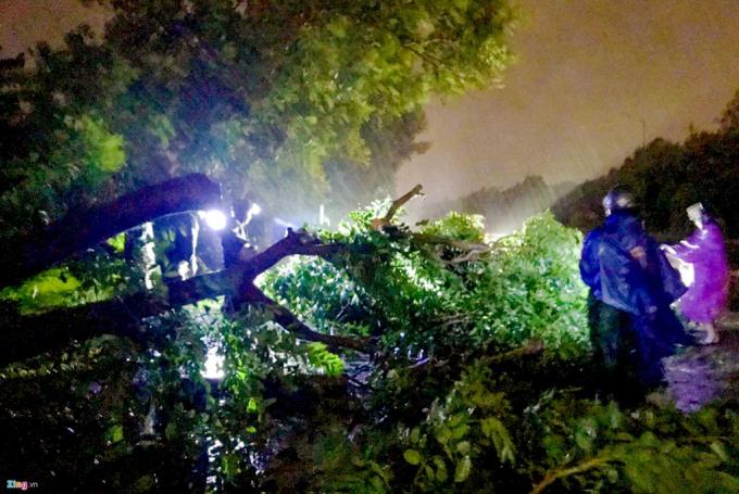 Ảnh hưởng của hoàn lưu bão số 5 gây ra gió giật mạnh, mưa rất lớn cho khu vực Nam Trung Bộ. Ảnh: Zing.vn