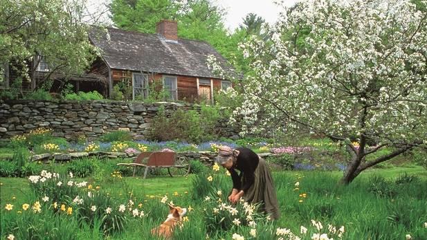 Ngôi nhà xinh đẹp với khu vườn muôn hoa khoe sắc.