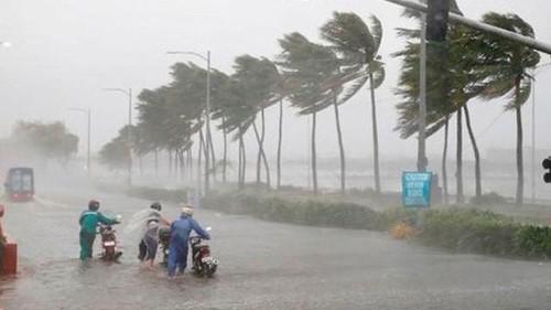 Áp thấp nhiệt đới đã vào đất liền