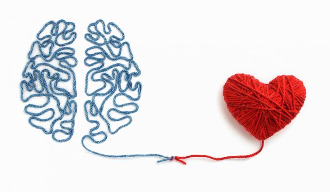 Nhiều nghiên cứu đã chứng minh, sức khỏe não bộvà tim mạch có liên hệ mật thiết với nhau.