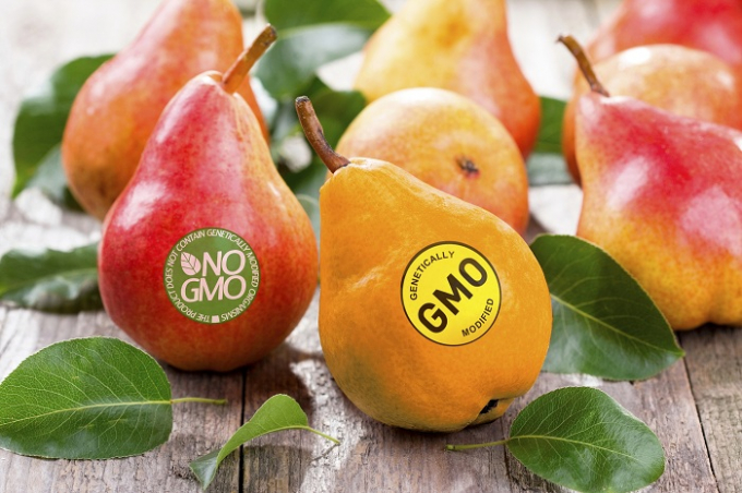 Nhận biết thực phẩm biến đổi gene