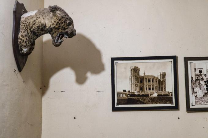 Trong phòng ngủ, những chiếc đầu báo treo trên tường, bên cạnh những bức hình về tòa nhà gia đình hoàng gia, kiến trúc từng nằm trên chính mảnh đất tại Gujarat này (Ảnh: Atlas Obscura).