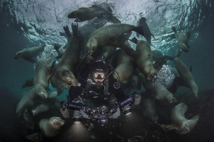 Nhiếp ảnh gia phiêu lưu, Steve Woods