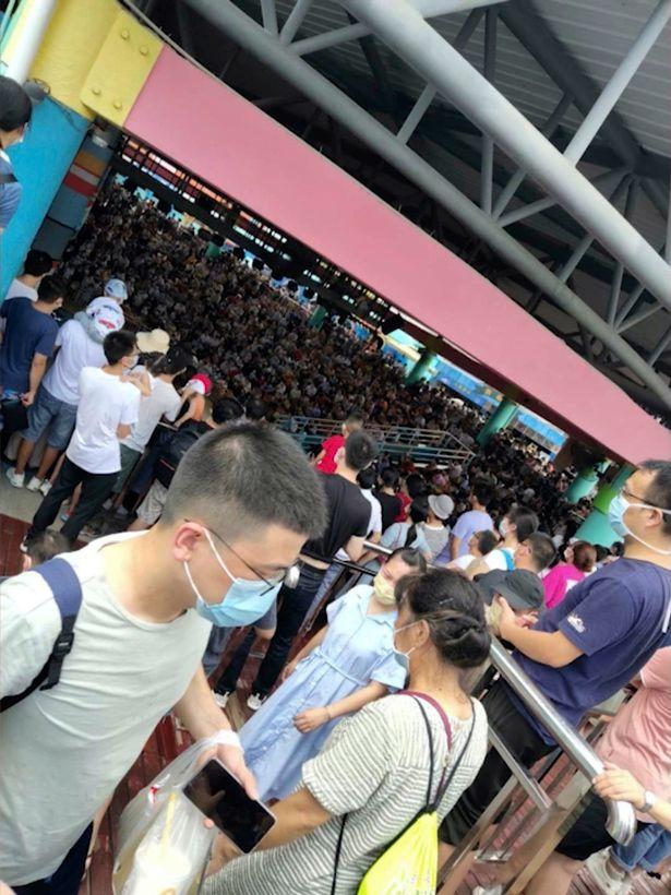 Một đám đông cỡ khoảng hơn 100 khách du lịch đang leo lên cầu thang tìm chỗ, khi xung quanh là vô số người khác thì đang chen chúc nhau đứng